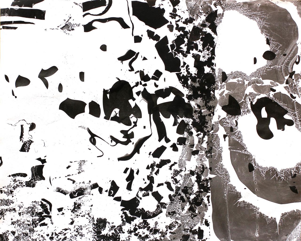 Kiss Botond András zaj 3 vektorgrafika és tusmárványozás suminagashi